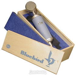 Bluebird microphone