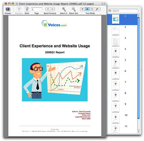 Client-Experience-and-Website-Usage-Report-2008Q1.jpg