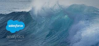 Salesforce Wave - 320.jpg