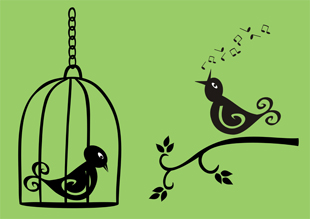 Vector image, bird in cage, bird singing on a branch, green background, black silhouettes, black birds