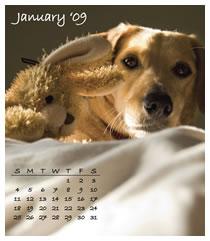 Calendar January 2009