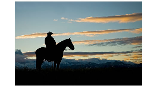 Cowboy riding horse at dawn