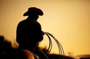 Cowboy on horseback, silhouette