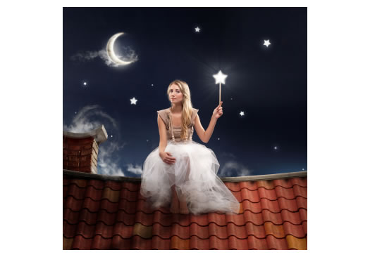 Fairy on the roof at night