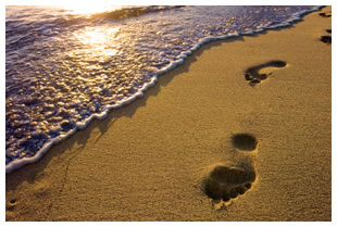 Footprints in the sand on the shoreline of a shimmering lake