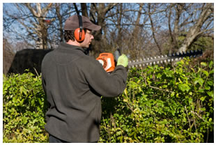 Man using landscaping tool