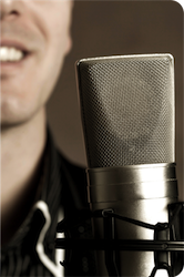 Report On The Voice-Over Industry
